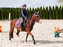 Young girl training horse riding Royalty Free Stock Image