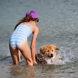 Young girl trains her dog swimming stock image
