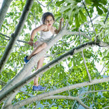 Young girl on tree. Young girl climbing on a fig tree Royalty Free Stock Photos