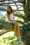 Young girl on tree branch Royalty Free Stock Photography
