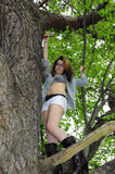 Young Girl in Tree Shirt open. Young girl with shirt open and bikini top underneath up in a tree Stock Photography