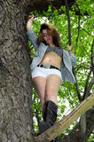 Young Girl in Tree Shirt open. Young girl with shirt open and bikini top underneath up in a tree Royalty Free Stock Photography
