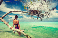 A young girl in a tropical sea. A young girl resting near a tree in the turquoise sea Stock Photos