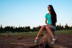 Young girl in turquoise dress sitting on a stump on the shore royalty free stock image