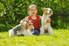 Young Girl and two fox terriers Stock Image