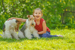 Young Girl and two fox terriers Stock Photo