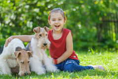 Young Girl and two fox terriers Stock Photography