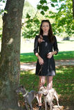 Young girl  with two greyhounds in the park Royalty Free Stock Photos