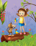 A young girl with two parrots and a monkey in the forest Royalty Free Stock Photography