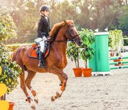 Young girl in uniform jumping with sorrel horse. Blond pretty little girl going jump a hurdle in a competition. Girl with red horse during equestrian Royalty Free Stock Image