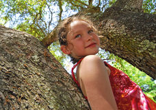 Young Girl Up in Tree Royalty Free Stock Photos