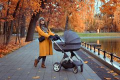 Young girl walking in an autumn park with a baby stroller stock photo