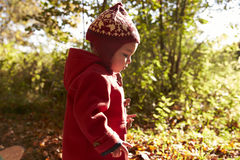 Young Girl Walking In Autumn Woodland Royalty Free Stock Photos