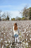 Young girl walking through cotton field. Royalty Free Stock Photos