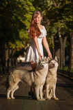 Young girl walking down the street with two dogs. Stock Image