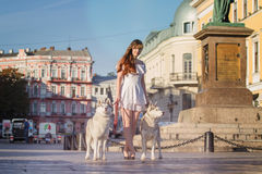 Young girl walking down the street with two dogs. Stock Images