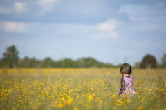 Young Girl Walking Through Field of Yellow Flowers Stock Images
