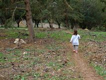 Young girl with walking in the forest back to camera Stock Photos