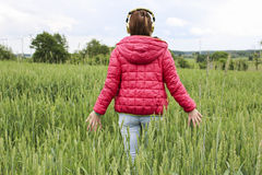 Young girl walking through grain field. Photo of young woman enjoying music and walking through the field Royalty Free Stock Image