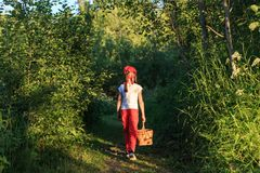 Free Young Girl Walking On A Path Through Green Woods Carrying A Basket Stock Image - 125648051
