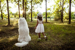 Young girl walking, playing with dog in park at sunset. Young pretty girl in dress and hat walking, playing with white dog in park at sunset Royalty Free Stock Photography