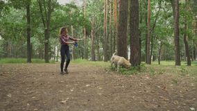 Young girl walks with the dog in the forest stock video