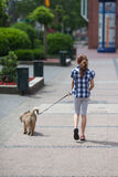 Young girl walks a puppy in the city Royalty Free Stock Photo
