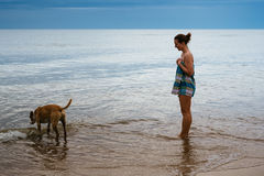 Young girl watching dog drinking water by the sea Royalty Free Stock Photos
