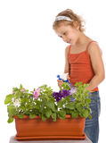 Young girl watering a flower Royalty Free Stock Image