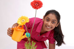 Young girl watering plant Stock Image