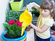 A Young girl watering potted flower plant smiling Royalty Free Stock Photography