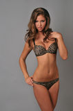 Young girl wearing animal print lingerie Royalty Free Stock Photo