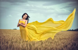 Young girl on wheat field Royalty Free Stock Photo