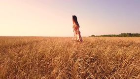 Young girl in wheat field stock footage