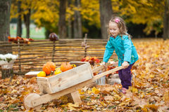 Young girl with wheelbarrow Royalty Free Stock Image