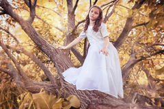 Young girl in a white dress against a tree in autumn Stock Images