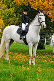 Young girl with white dressage horse Royalty Free Stock Images