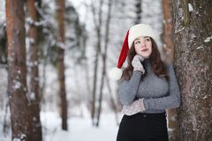 A young girl in a winter park on a walk. Christmas holidays in t royalty free stock photos