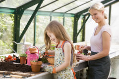 Young girl and woman in greenhouse putting Royalty Free Stock Photos
