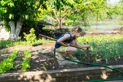 Young girl working in the garden Stock Photos