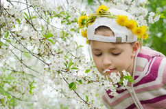 The young girl with a wreath from yellow flowers on the head Royalty Free Stock Photos