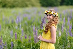 Young girl in yellow dress walking on meadow with lilac lupines. Warm summer day. Flower wreath for head royalty free stock photos