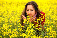 The young girl and yellow flowers Royalty Free Stock Photography
