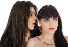 Young girlfriends sharing their secrets, studio shot. Two young girlfriends sharing their secrets, studio shot Royalty Free Stock Image