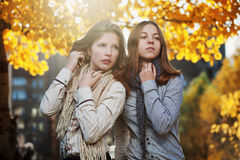 Young girls in an autumn park Royalty Free Stock Images
