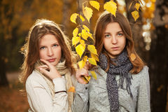 Young girls in autumn park Royalty Free Stock Photo