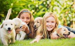 Young Girls with Baby Puppies Royalty Free Stock Photo