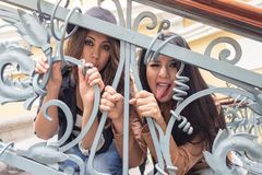 Young girls behind metal railings. Young funny girls posing behind metal railings Stock Photo