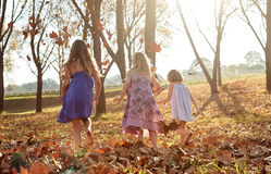 Young girls children kids playing running in fallen autumn leave Stock Photography