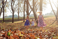 Young girls children kids playing running in fallen autumn leave Royalty Free Stock Photography